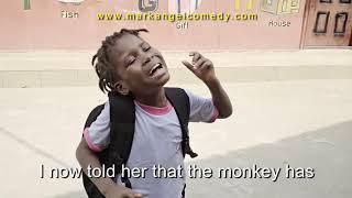 Tubidy ioMY PET Mark Angel Comedy Episode 198