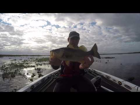 Open Tournament (Caloosahatchee River)