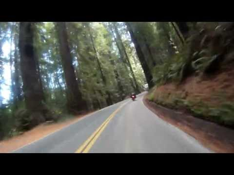 2013 NorCal Tour | CA 254 | Avenue of the Giants