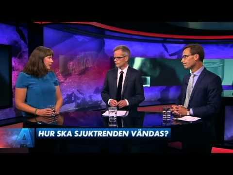 Åsa Romson (MP) och Ulf Kristersson (M) debatterar kvinnors ökande sjukfrånvaro i augusti 2013