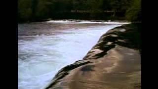 Nuno Prata - Fala Do Homem Nascido