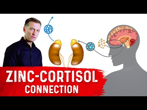Zinc Ability to Lower Cortisol