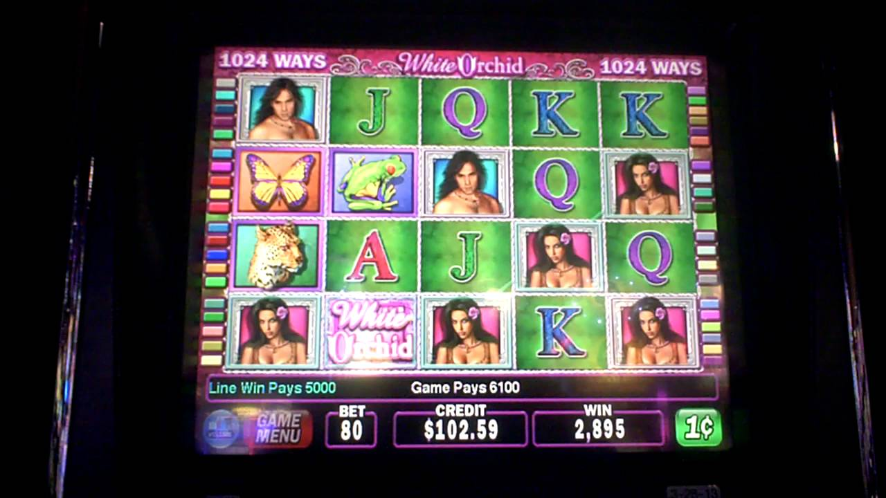 White Orchid Slot Machines