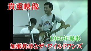 貴重映像・加瀬邦彦&ザ・ワイルドワンズコンサート~1985年
