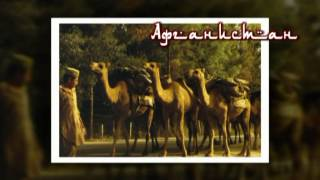 Афганистан, документальный фильм