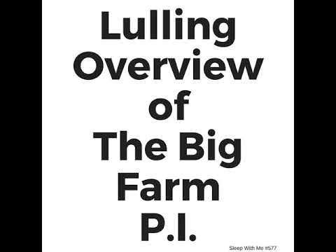 577 - Lulling Overview of The Big Farm P.I.