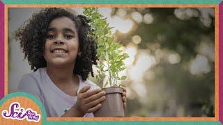 The Wonderful World of Plants! | Compilation