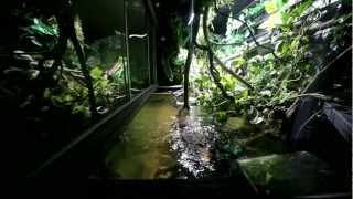 3000 liter paludaria summer 2012