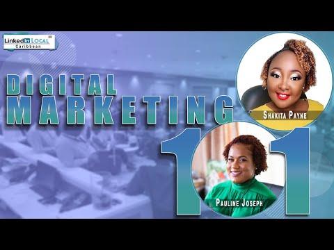 Digital Marketing Strategies for Caribbean Entrepreneurs| LinkedIn Local Caribbean