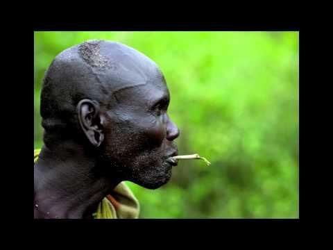 Tribal Organic MUSIC