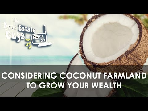 Considering Coconut Farmland to Grow Your Wealth