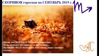Скорпион гороскоп на СЕНТЯБРЬ 2019 г.