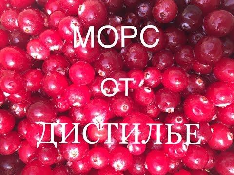 ОЧЕНЬ ВКУСНЫЙ МОРС/ Cranberry juice / Cranberry-Saft