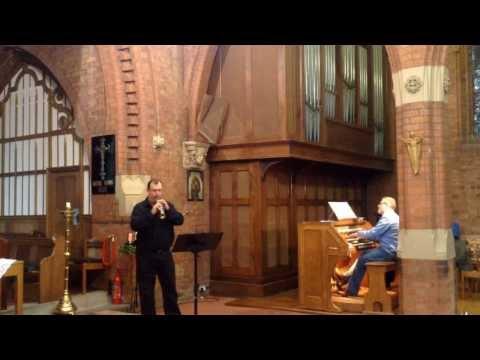 Ave Maria - soprillo & organ