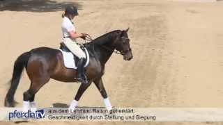 Reiten gut erklärt Teil 3: Stellung und Biegung, Dr. Britta Schöffmann