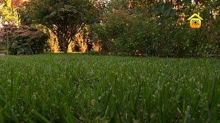 видео Замечательные фото английского ландшафтного дизайна