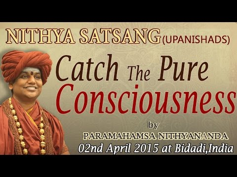 Catch The Pure Consciousness