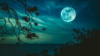 Meditazione luna piena il sale e la luce della vita