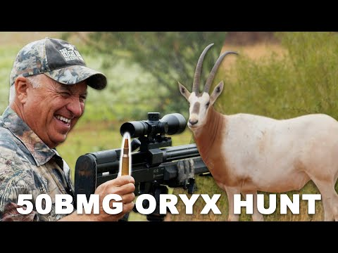 Hunting EXOTICS with a 50BMG
