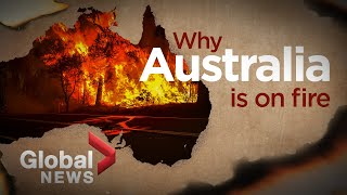 Bushfires in Australia: What ignited the deadly crisis