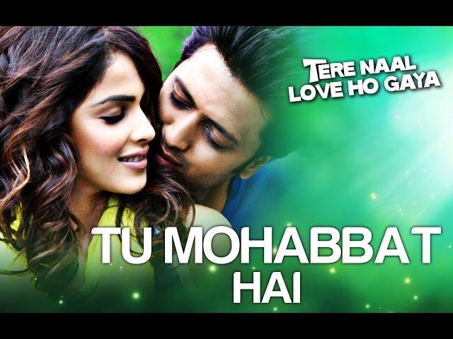 Tu Mohabbat Hai - Video Song | Tere Naal Love Ho Gaya | Riteish & Genelia | Atif Aslam