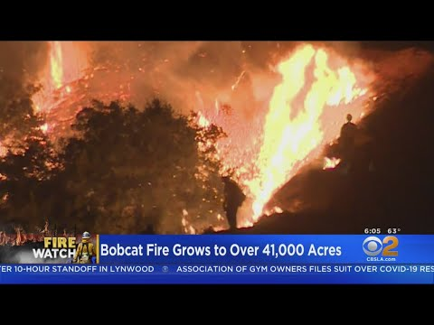 Firefighters Making Stand Against Raging Bobcat Fire Threatening Mount Wilson Observatory