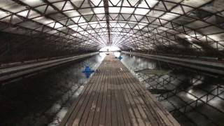 видео Разведение осетровых мини ферма (бизнес план) в домашних условиях