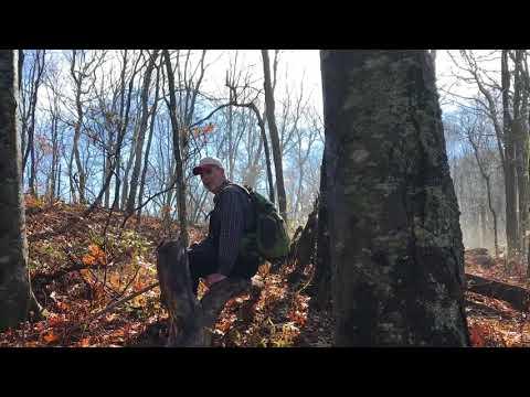 Wagon Trail Hike November 2017