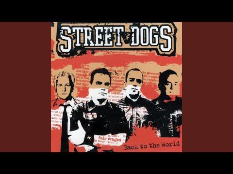 street dogs strike a blow