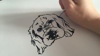 Portrait : pet speed ink drawing | Gyul