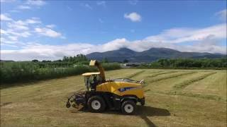 2nd Cut Silage - Northern Ireland - Martin Bros Contracts // annatrues