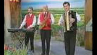 Bregenzerwälder Dorfmusikanten - Melodie der Heimat