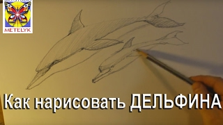 Как нарисовать дельфина(Как научиться рисовать дельфина простым карандашом - просто быстро весело https://youtu.be/-l9qBFmx8q8. Вначале нужно..., 2017-02-10T11:09:33.000Z)