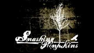 The Smashing Pumpkins - Bullet with Butterfly Wings (8 bit)