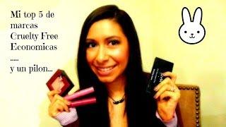 Mi top 5 de marcas sin crueldad (economicas) / My Top 5 Cruelty Free Brands (drugstore)