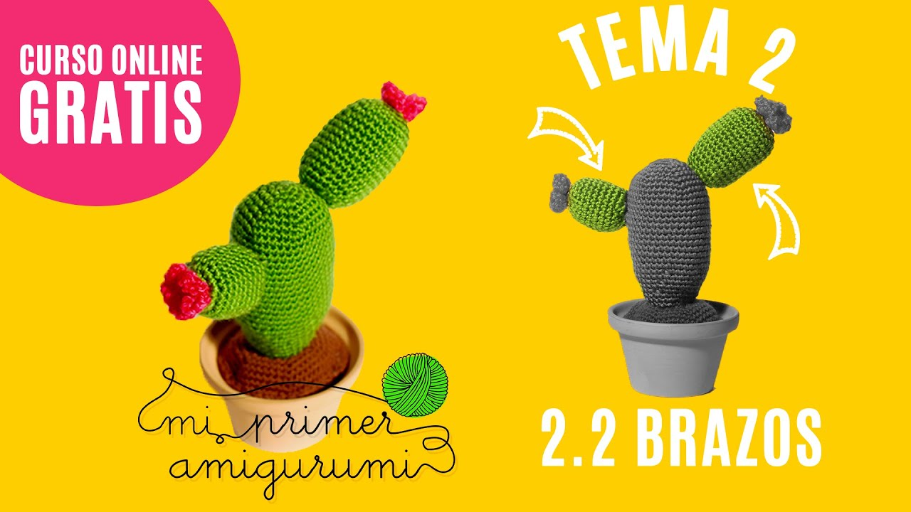 Amigurumi Cactus Paso A Paso : Cactus amigurumi ganchillo paso a brazos mi