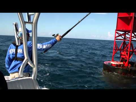 Catching Bait on Structure with Yamaha Helm Master