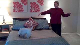 Arrange Your Bedroom Using Feng Shui.mp4