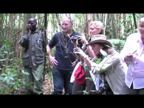 Rwanda gorilla trek with Lakeside tours and Travel
