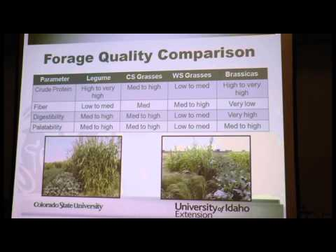 DECD Workshop - Joe Brummer, CSU/UI Cover Crops