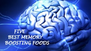 Five Best Memory Boosting Foods - Feed your Brain