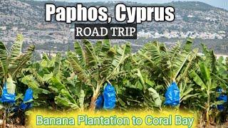 Paphos Cyprus Banana Plantation to Coral Bay Road Trip 29th December 2020 Phase 3 Lockdown