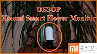 Xiaomi Smart Flower Monitor - обзор анализатора почвы и освещённости для комнатных растений.