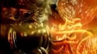 REISHI O GANODERMA - ELIXIL DE LA VIDA