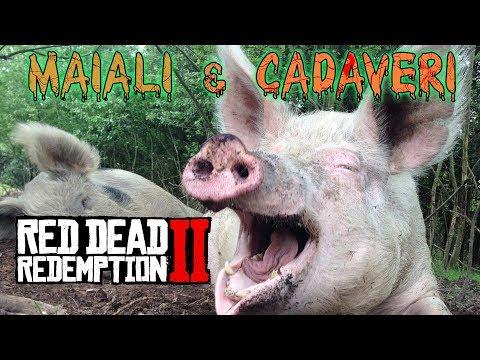 RED DEAD REDEMPTION 2: Che succede se butto un cadavere ai maiali? Niente. #noclickbait