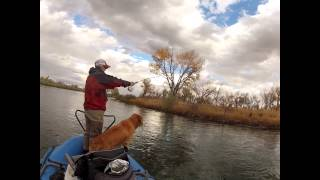 The Sexy Tracy Moore Fly fishing the Big Horn with Montana Matt
