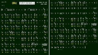 7.月亮代表我的心-鄧麗君(Bb)K 伴奏-(簡譜)