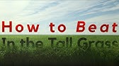 """3 Ways to Beat """"In the Tall Grass"""" (2019)"""