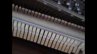 為你的寂寞唱歌 (原唱 家家 Jia Jia )  Piano Cover: Vera Lee
