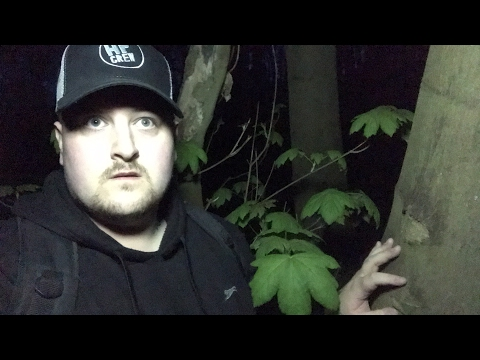 Haunted Satanic Woods Haunted Finders Live